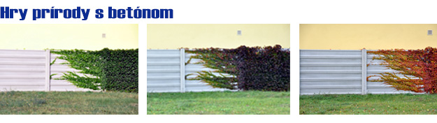 Betonové ploty moravskoslezský kraj